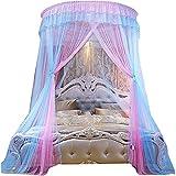 Cama de Mosquitos Red Dosel de Encaje de Malla Princesa cúpula mosquitera decoración cedas Colgando Cortinas para Cama Doble Azul 2m