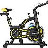 SAFGH Bicicletas de Ejercicio para Interiores Bicicleta de Fitness estacionaria Ciclismo Vertical Transmisión por Correa con Resistencia Ajustable, Monitor LCD Silencioso para Entrenamiento Cardio