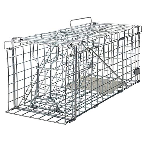 Gingbau Heavy Duty Live Animal Trap for Squirrels, Small Rabbits and More