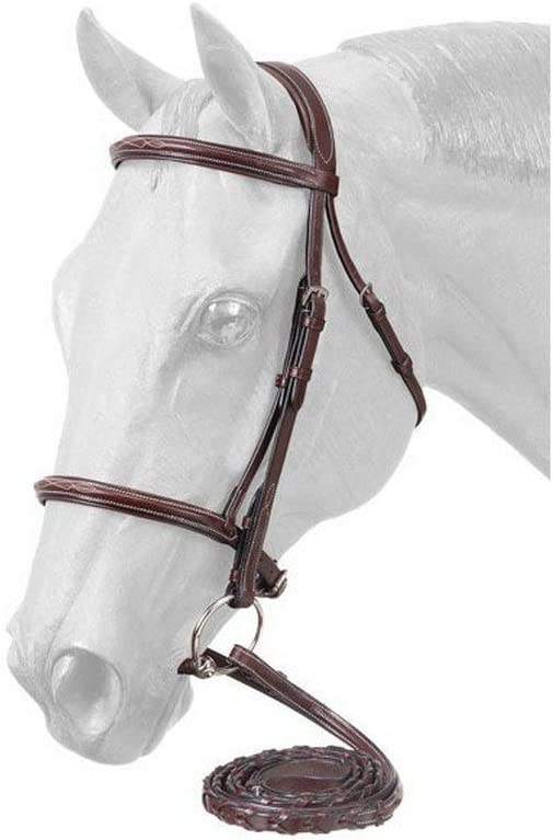 EquiRoyal Premium Max 70% OFF Padded Fancy Stitched Bridle Ranking TOP16 Raised - English