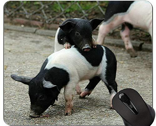 Yanteng Cojín de ratón de Cerdo Animal de Granja, Cerdos de Silla de Montar alemanes Cojín de ratón de Juego Piggy Gaming Lindo y Divertido