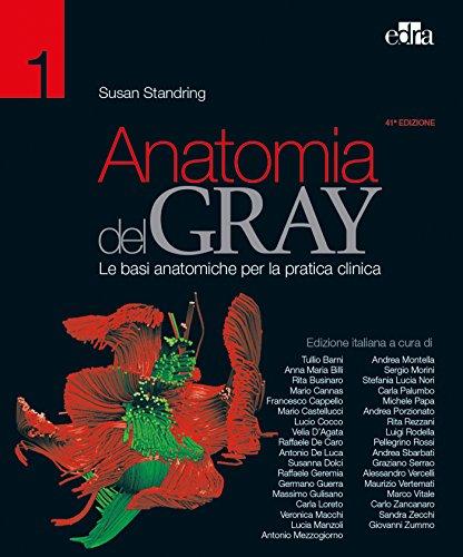 Anatomia del Gray. Le basi anatomiche per la pratica clinica [Due volumi indivisibili]