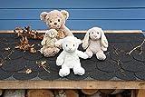 Steiff Hoppie Hase - 28 cm - Plüschhase mit Schlappohren - Soft Cuddly Friends - Kuscheltier für Kinder - waschbar - hellgrau (080470) - 8