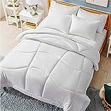 Best Duvet Inserts - Bedsure Comforter Full/Queen Size 300 GSM Microfiber All Review