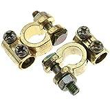Conectores de terminales de batería de cobre positivos y negativos redondos para auto/furgoneta