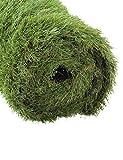 GOLDEN MOON Artificial Grass for Dogs 1.57' 3ft x 6ft Pet Grass Puppy Potty Training Grass Turf Rug Premium Fake Grass Mat 5-Tone Realistic & Soft Series