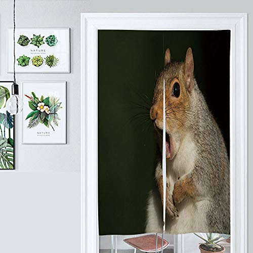SUPNON Design Japanese Traditional Doorway Curtain Grey Squirrel Yawning Door Curtain for Kitchen Bistro Partition Shading Home Decorative IS131759 W33.5 x L59