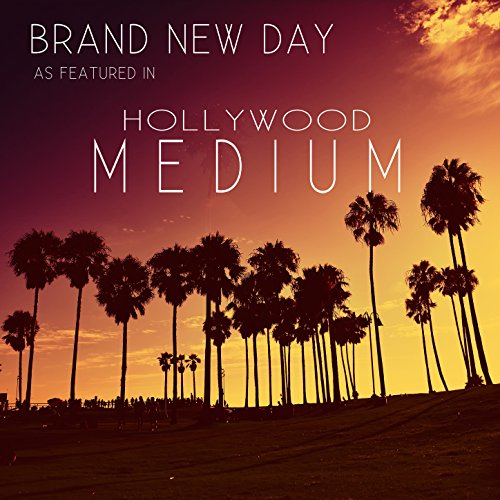 Brand New Day (Brando Remix) [As Featured in