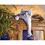 Xpboao Adultos Pintura por Números Pintar de Kits - Gato Animal - Principiantes DIY Pinceles y Pinturas - Decoraciones para el Hogar - 40x50cm - Sin Marco