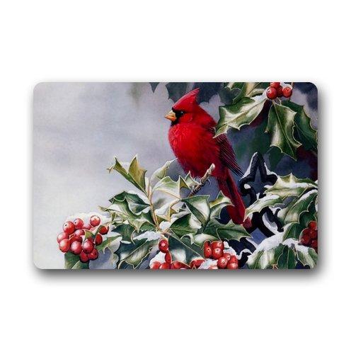 Animal serie deurmatten Grappige Rode Vogel Cardenal Art Leuke Vogels Ontwerp Niet-geweven Stof Top Gepersonaliseerde Deurmat Binnen/buiten Deurmat 23,6 x 39,88 cm