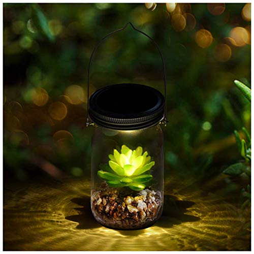 Decorative night lamp succulent terrarium