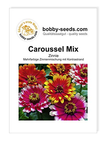 Bobby-Seeds Zinnien Samen Zinnie Caroussel Mix Portion