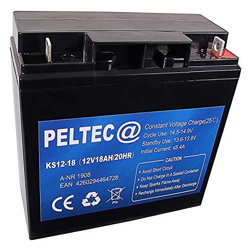 PELTEC@ Premium Blei AGM VLRA Akku Batterie 12V 18Ah 20HR, ersetzt auch 15Ah 20Ah 22Ah (zyklenfest + wartungsfrei)
