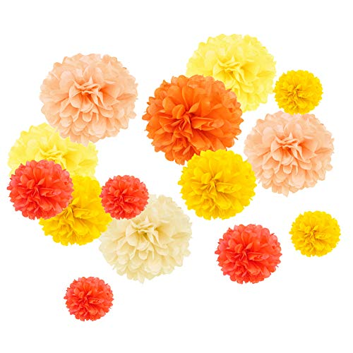 SUNBEAUTY 14er Set Papier Pompoms Orange Gelb Apricot Seidenpapier Blumen Party Geburtstag Feier Dekoration