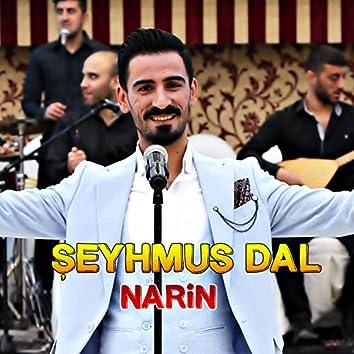 Narin