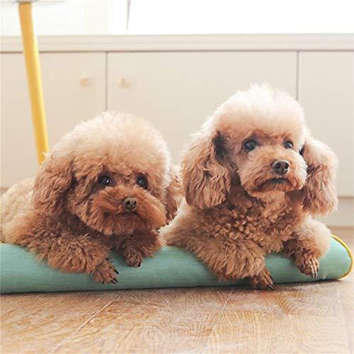Linzxu hondenbed, middelgroot, wasbaar, mand voor honden, katten, Oxford-stof, dubbelzijdig, panty's, 3 kleuren, groen, S