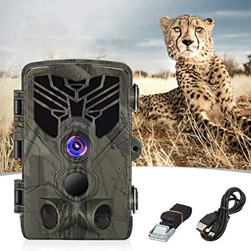 BAIYAN 1080P HD Hunting Wildlife-Kamera mit wasserdichtem 120 ° -Weitwinkel-Wärmebewegungsdetektor für Natur, Überwachung und Sicherheit zu Hause