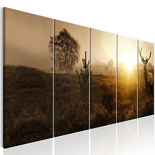 murando Impression sur Toile intissee Cerf 225x90 cm Tableau 5 Parties Tableaux Decoration Murale Photo Image Artistique Photographie Graphique Nature Animal Paysage g-B-0050-b-n