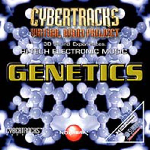 Cybertracks - Virtual Audio Project
