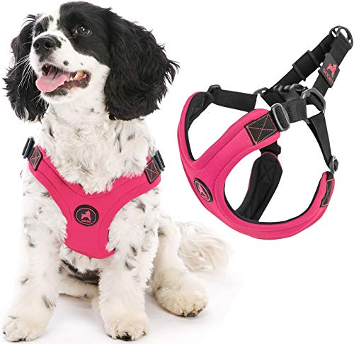 Gooby Dog Harness - Pink, Medium - Escape Free Sport Patented Step-in Neoprene Small Dog Harness - Perfect on The Go Four-Point Adjustable Harness for Small Dogs or Cat Harness