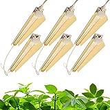 Barrina Plant Light, 144W(6 x 24W, 800W Equivalent), 2ft T8, Super Bright, Full Spectrum...