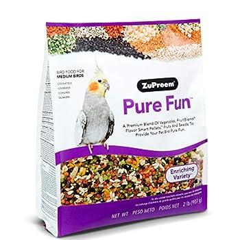 Zupreem Nourriture pour Oiseaux Fun Pur pour Moyennes Oiseaux par 2 LB
