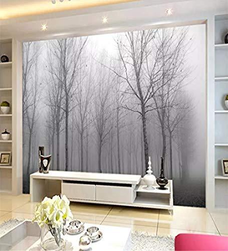 XHXI Tapete Papel Pintado personalizado niebla en el Bosque decoración del hogar europeo TV Fondo Muro salón dormit Wanddekoration fototapete 3d Tapete effekt Vlies wandbild Schlafzimmer-250cm×170cm