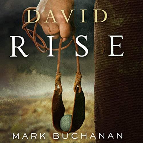 David: Rise Audiobook By Mark Buchanan cover art