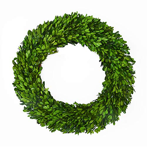 Boxwood Wreath Large 17 inch Preserved Nature Real Boxwood Wreath Home Decor Stay Fresh for Years Wreath for Halloween and Thanksgiving Home Indoor Decor