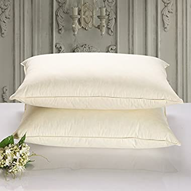 SNOWMAN Down and Feather Blended Filling Pillows,Ultra Soft For Sleeping,600 Thread Count 100% Cotton Fabric,Ivory Queen Size (Set of 2)