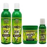 BOE Crece Pelo -Lote de productos para el crecimiento del cabello, mascarilla de 450 g, champú de 370 ml, acondicionador de 350 g y crecepelo revitalizante sin aclarado de 113 g