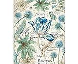 Papel De Arroz Azul Tulip, Stamperia, A4, Decoupage Arroz Papeles, Hobby Colores