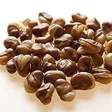 いかり豆 1kg フライビンズ フライ空豆 いかり豆 イカリ豆 そらまめ 花豆 赤穂の焼き塩でまろやか仕立て