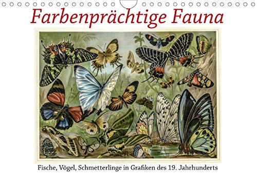 Farbenprächtige Fauna. Fische, Vögel, Schmetterlinge in Grafiken des 19 Jahrhunderts (Wandkalender 2021 DIN A4 quer)