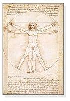 ポスター レオナルド ダ ヴィンチ ウィトルウィウス的人体図