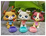 LPS Collie Set of 3 2452 1542 2210 Dogs Puppy Lot with Accessories Collars Food Stick on Earring Collection Toy Figure Girls Boys Gift