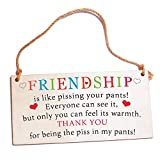 Best Friend Birthday Gifts Wood Plaques Sign Gift for Her Women Good Friends Under 10 Dollars Gift for for Women Her