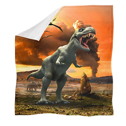 ZGZZD Sofa Throw Blankets,Winter Soft Warm 3D Print Sofa Throw Blanket Chic Orange Volcano Eruption Dinosaur Animal Printed King Size Fluffy Blanket For Bed Couch Camping Travel,110X140Cm