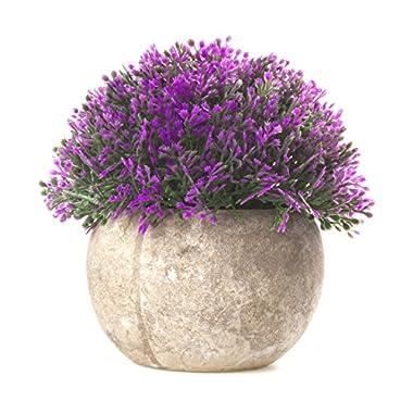SimLife Mini Plastic Lifelike Artificial Plants Fake Green Grass Flower with Pots for Home Décor (Purple)