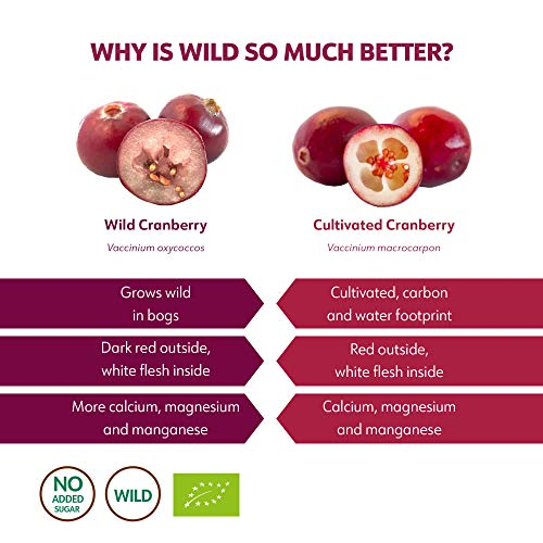 Bio Wild Cranberrysaft - 6