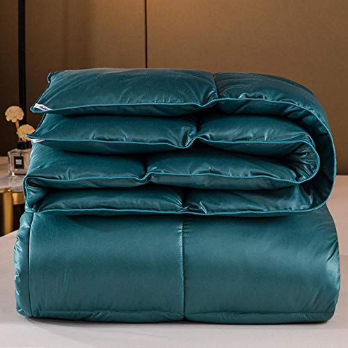 Hahaemall King Size Quilt White goose downfilled Winter Duvet Quilt -100% Cotton Anti Dust Mite & Down Proof Fabric - Anti Allergen-green_200x230cm-3000g