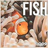 fish 2021 Calendar: 16 Months Calendar 2021 Sea fish