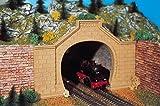 Vollmer 42505 Tunnelportal Rheintal zweigleisig -