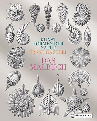 Kunstformen der Natur von Ernst Haeckel: Das Malbuch
