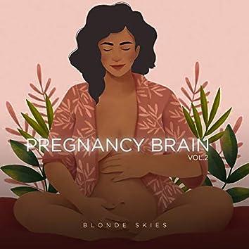 Pregnancy Brain, Vol. 2