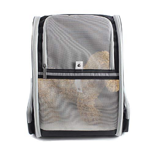 Pet Travel Carrier Comfort Uitbreidbare Opvouwbare Reistas voor Honden en Katten