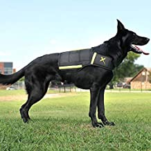 Xdog Weight & Fitness Vest for Dogs - A Weighted Dog Vest Used to Build Muscle, Improve Performance, Combat Obesity & Anxiety - Improve Your Dog's Overall Health & Exercise. (X-Large, Black)