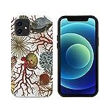 Coque de protection en bois personnalisée compatible avec iPhone 12 ou 12 Pro, résistante aux...