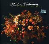 Songtexte von Andrés Calamaro - El palacio de las flores