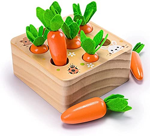Wooden Toys for 1 Year Old Boys and Girls Montessori Size Sorting & Counting Puzzle Game for 2 3 Year Olds Carrots Harvest Developmental Gifts for Fine Motor Skill